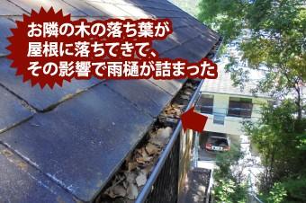 落ち葉が屋根に落ちてきて雨樋が詰まった