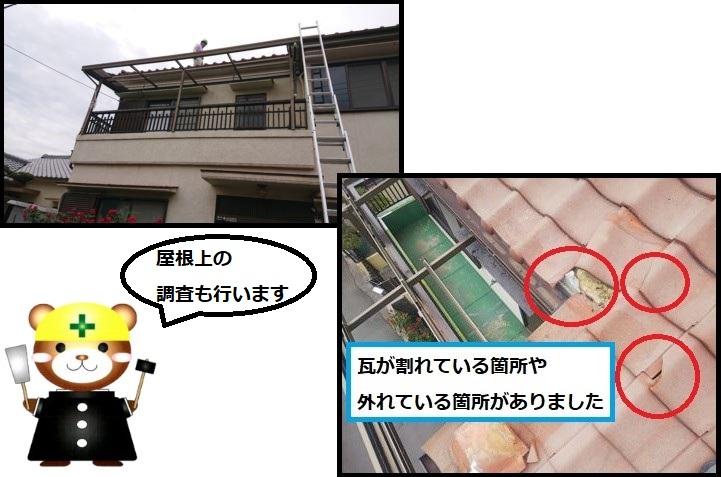 屋根上の調査