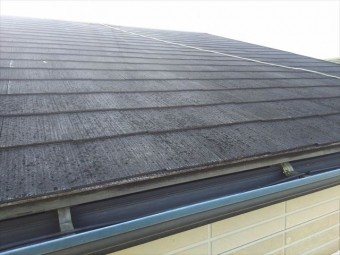 雨漏り屋根状況