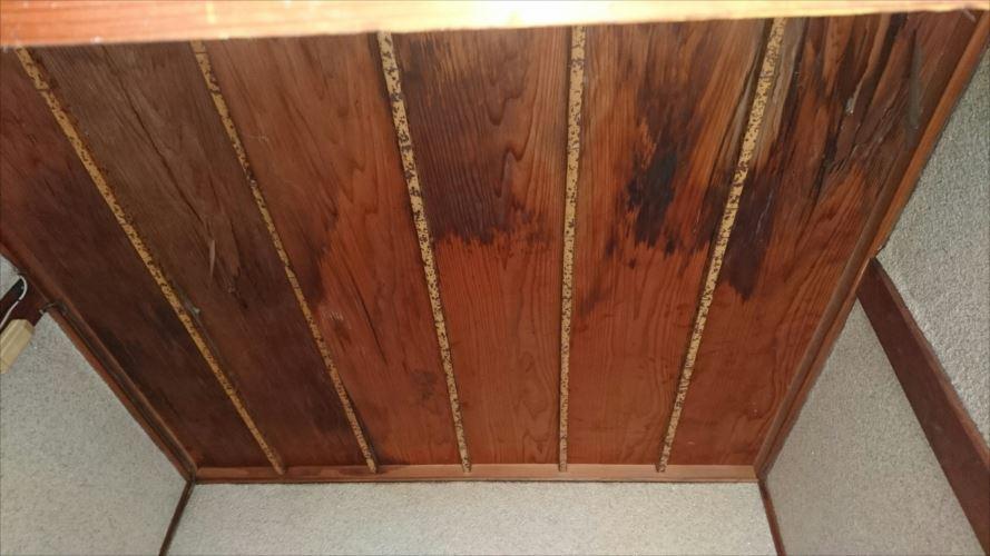 天井張り替え箇所