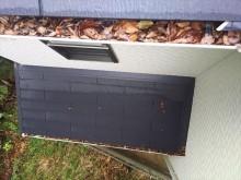 軒樋落葉の状況