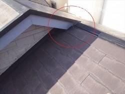 屋根全景1