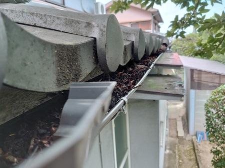 軒樋 落ち葉詰まり 清掃前