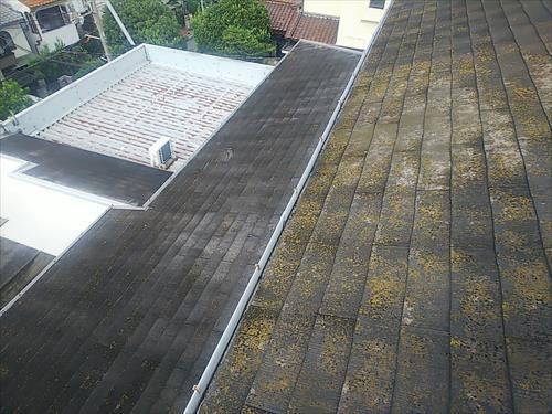 スレート屋根劣化 コケ 色褪せ