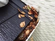 屋根軒樋壁落葉
