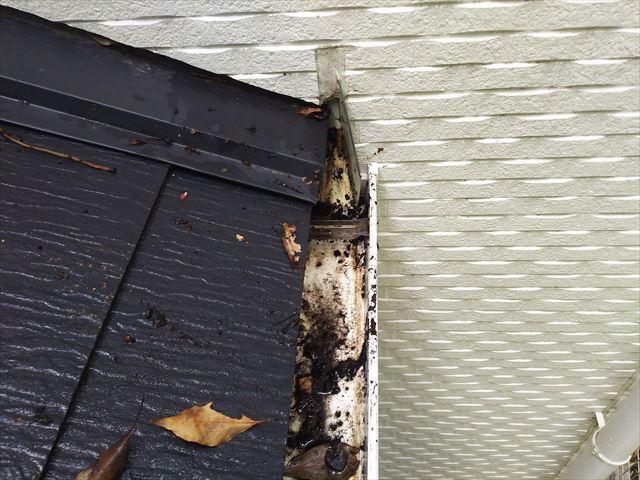 屋根軒樋壁際落葉取り除き状況
