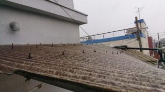屋根上被害状況