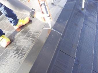 屋根その他棟板点検補修