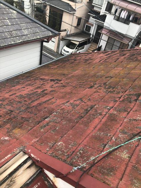 和泉市 屋根劣化