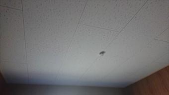 天井 張替完了
