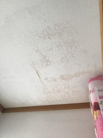 天井雨漏れ