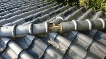 大屋根棟瓦破損