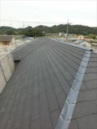 カラーベスト 屋根
