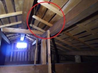 天井裏 雨漏れ箇所