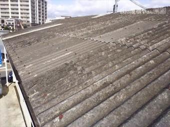 スレート屋根点検全景