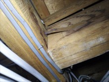 屋根裏調査 金物