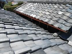 屋根取り合い ネコ侵入対策