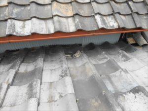 屋根取り合い 板金 ネコ侵入対策