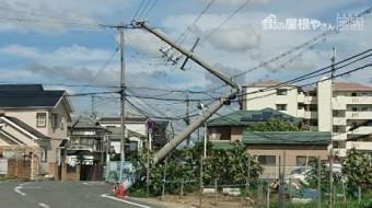 電線で辛うじて倒壊していない電柱