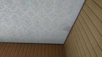 洋間天井再調査時現況