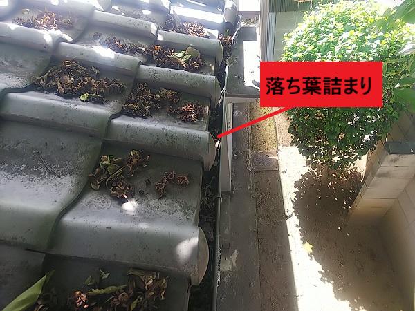 軒樋に落ち葉が詰まっている オーバーフローの原因