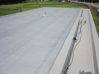 屋上 シート防水完了
