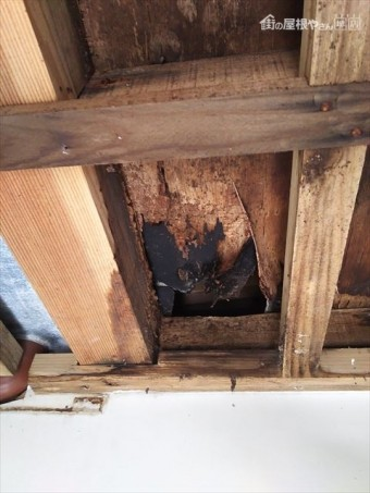 屋根漏水部室内天井裏状況