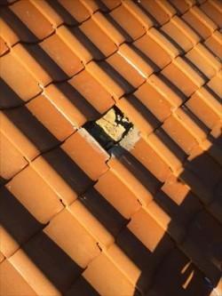 屋根瓦 飛散箇所