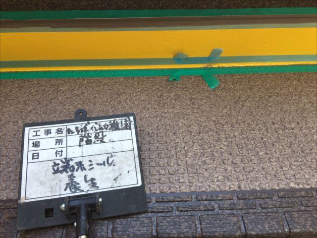 鉄骨階段床面シート貼りシール養生