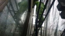 外壁高圧水洗浄
