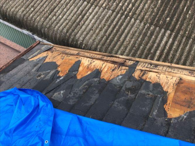 堺市中区にて強風の影響で屋根材が飛散してしまい現地調査へ
