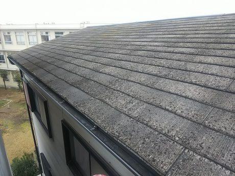 大屋根劣化状況