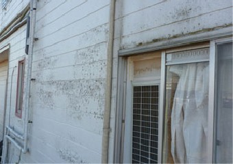 塗膜の剥がれた外壁